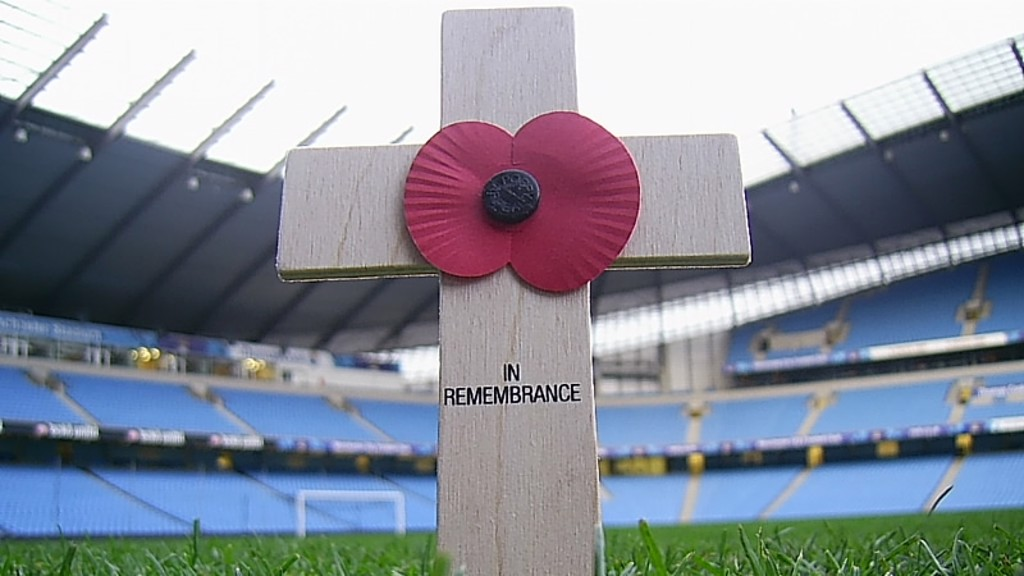 Poppy in stadium for Remembrance Day