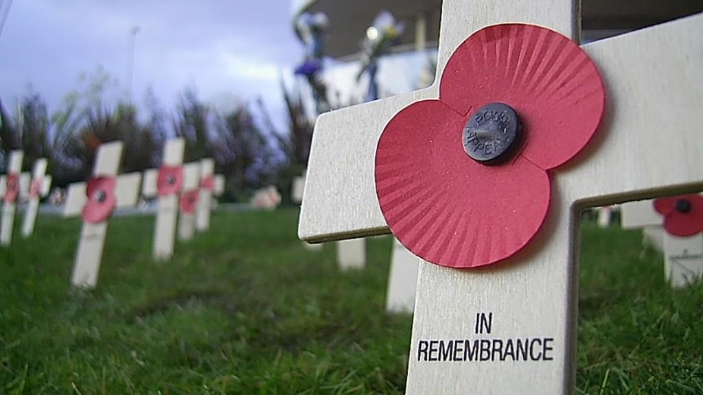 Poppy in memorial garden