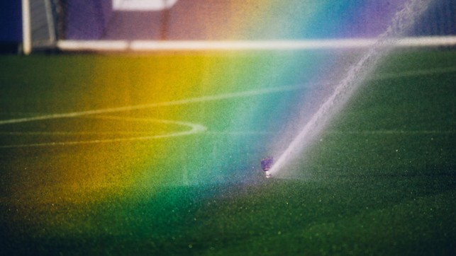 OVER THE RAINBOW: Some photo opportunities are just too good to turn down