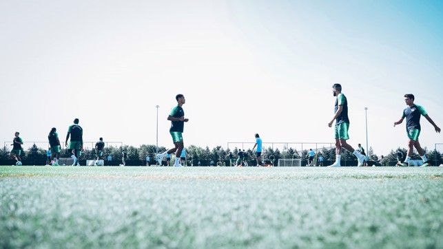 SEA OF GREEN: Turf and training