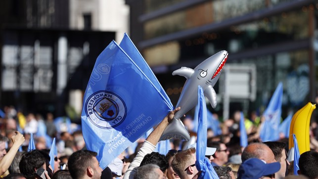Blue flags flying...