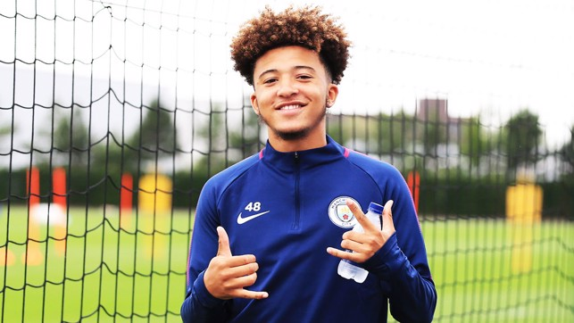 YOUNG GUN: Jadon Sancho has been involved with the first team squad