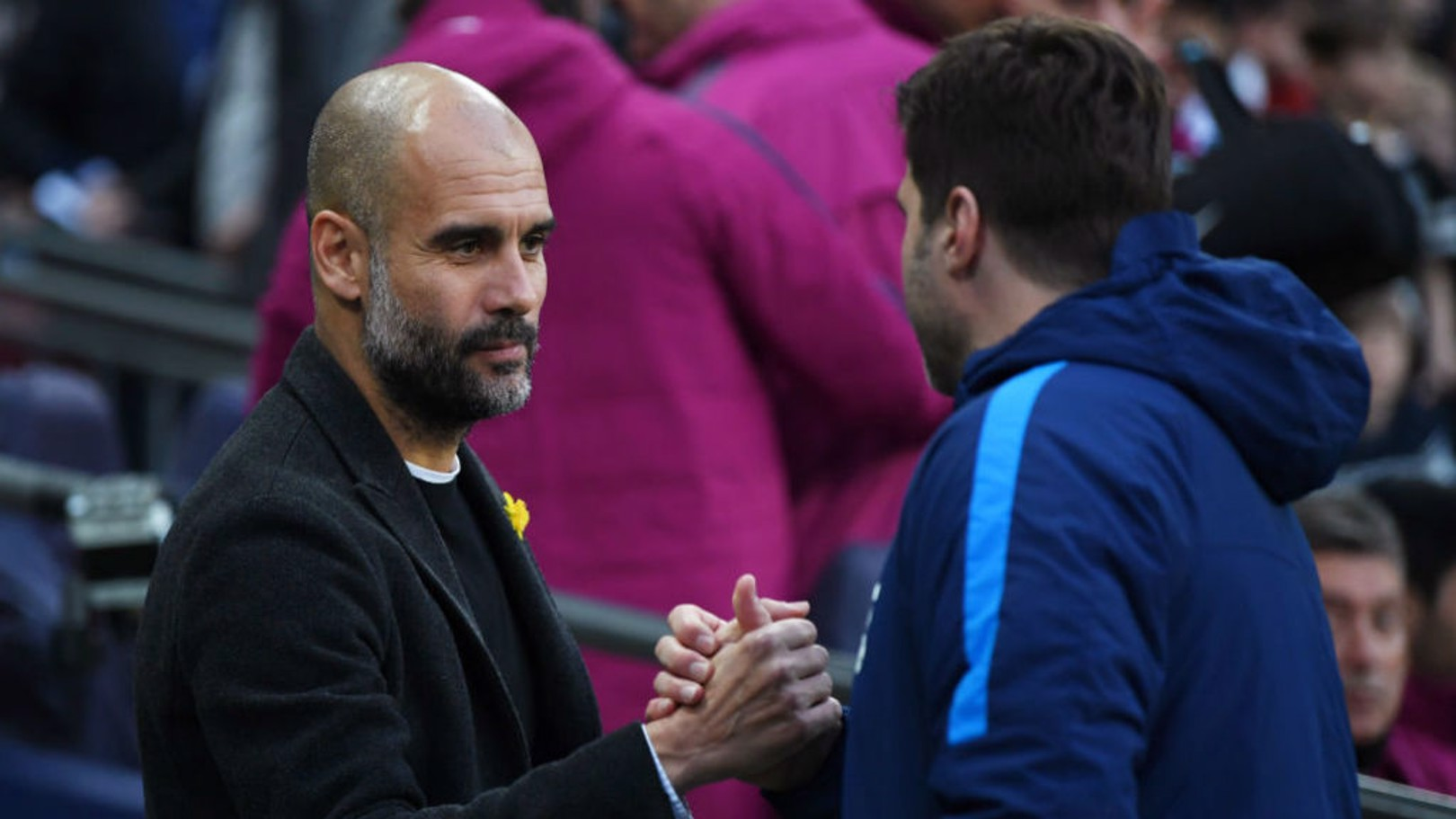 RESPECT: The two manager shake hands before kick-off