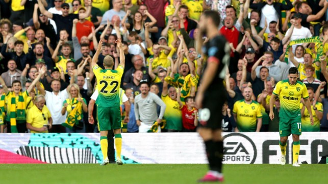 DISASTER: Pukki celebrates making it 3-1 to Norwich