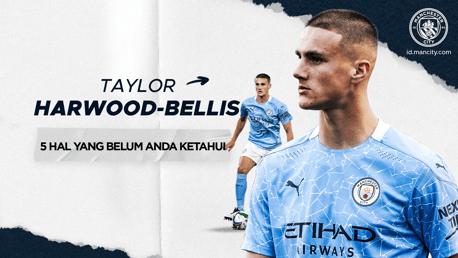 5 Hal Yang Belum Anda Ketahui: Taylor Harwood-Bellis