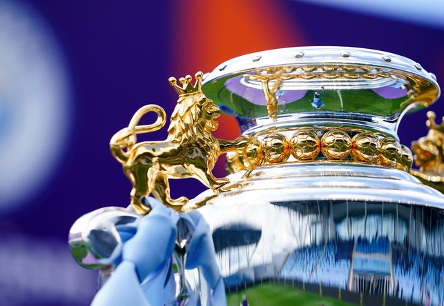 STUNNING : A close-up of the trophy!