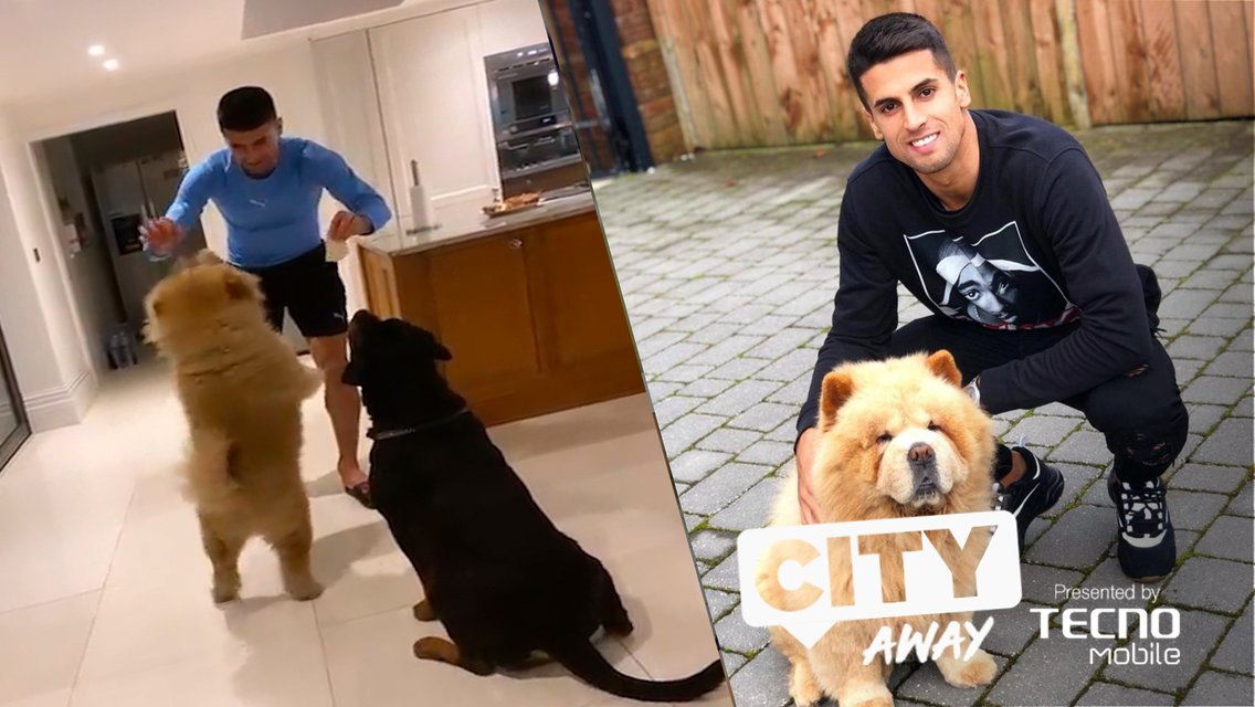 City Away #3: Cancelo's Doggy Day Care and Mendy's Brush Strokes