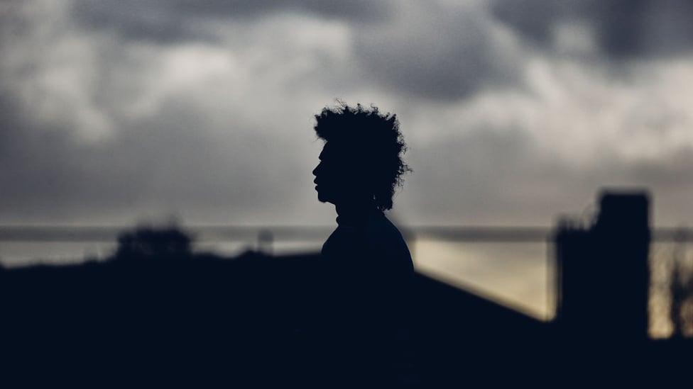 SILHOUETTE SHOT : Leroy, against a moody skyline