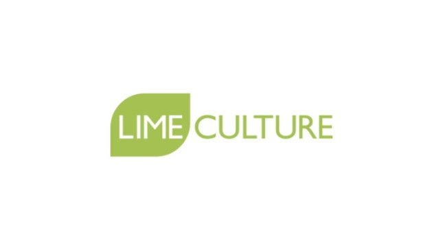 SUMMARY OF, AND CLUB RESPONSE TO, THE LIME CULTURE AUDIT