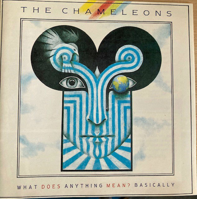 SECONDS OUT: What Does Anything Mean Basically, the Chameleons' second album